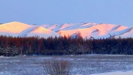 美图丨冬之美、冬之韵